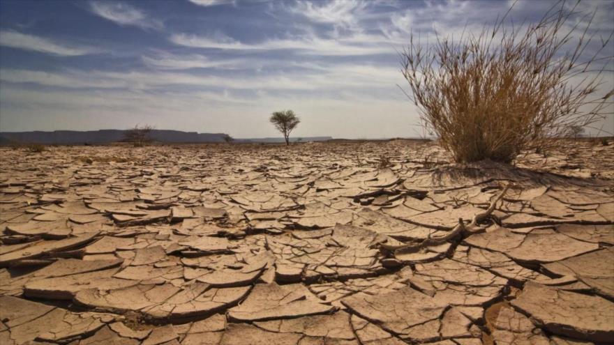 Suelo árido con grietas en un desierto de algún lugar de la Tierra.
