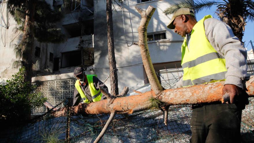 Trabajadores municipales mueven un tronco de árbol, ciudad ocupada de Ashkelon, 13 de noviembre de 2018. (Foto: AFP)