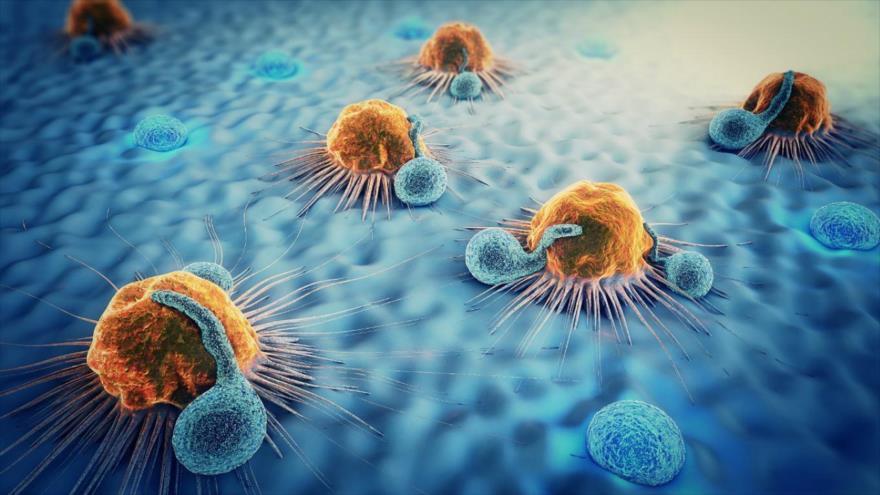 Resultado de imagen para cancer