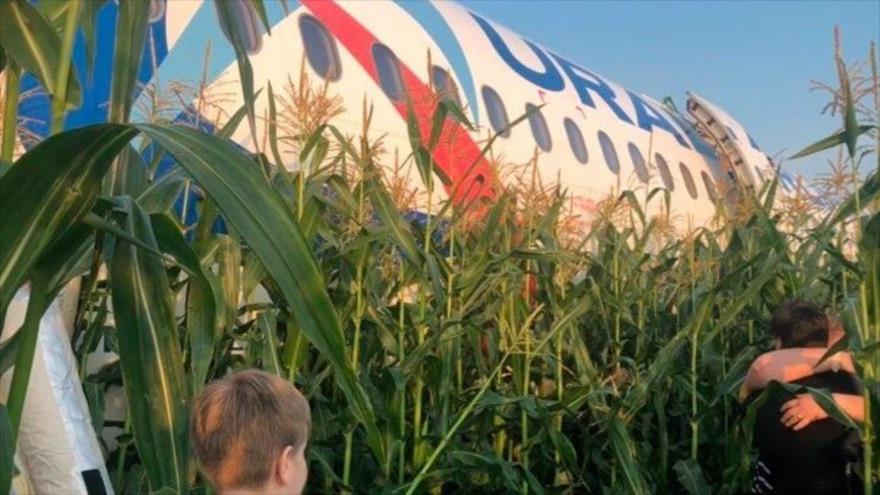 Vídeo: Aterrizaje de un avión pasajero ruso en un campo de maíz