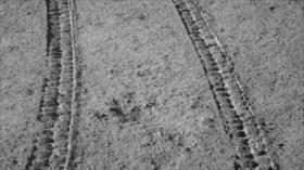 Nuevas fotografías revelan la cara oculta de la Luna