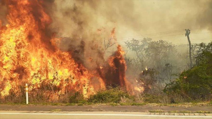 Incendio Forestal En Bolivia Calcina 460 000 Hectáreas