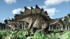 Hallan un tipo de estegosaurio, el más antiguo jamás descubierto