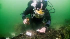 Hallan astillero más antiguo del mundo hundido en isla británica