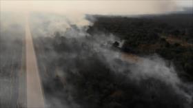 Incendios de la Amazonía aumentan preocupación global