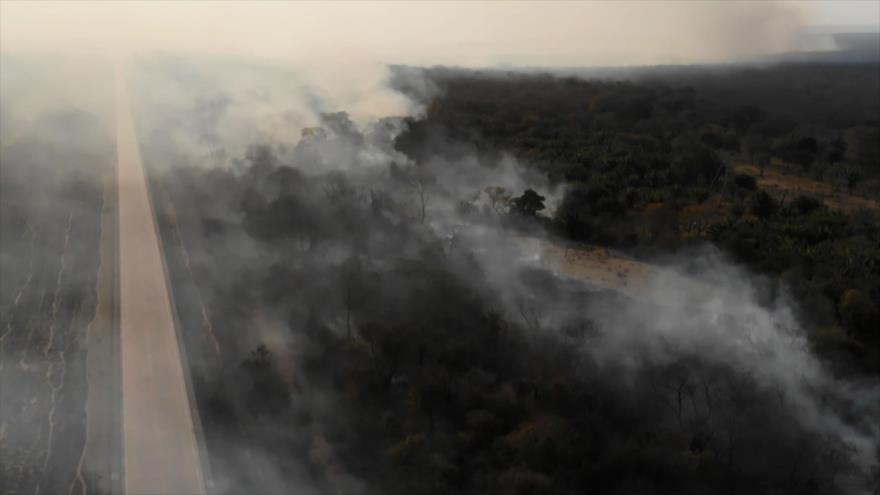 Incendios de la Amazonía aumentan preocupación global | HISPANTV