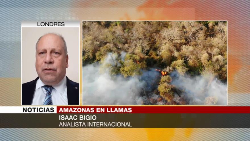 Bigio: Amazonas se está quemando por políticas de Bolsonaro | HISPANTV