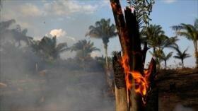Vean las fotos más impactantes de incendios en el Amazonas