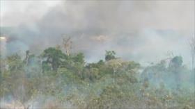 Brasil bajo presión internacional por incendios en el Amazonas