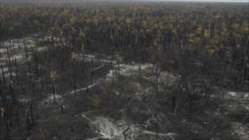 Solicitan a la CPI investigar a Bolsonaro por incendio en Amazonía