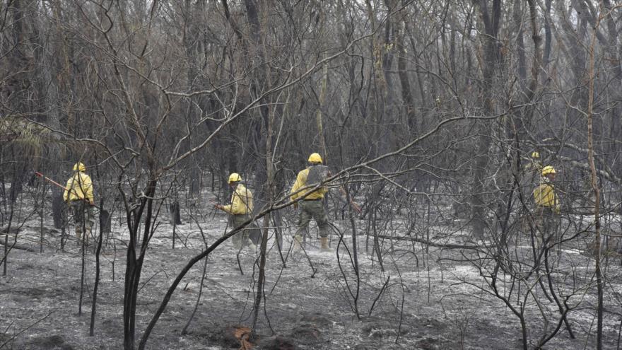 Paraguay sufre consecuencias de incendios forestales de Amazonía