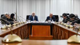 Zarif: EEUU, principal causa de la inestabilidad de Oriente Medio