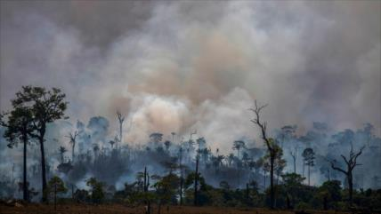 ALBA-TCP alerta de efectos de los incendios forestales en Amazonía