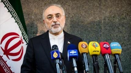 Jefe de OEAI iraní se reúne con director general interino de AIEA