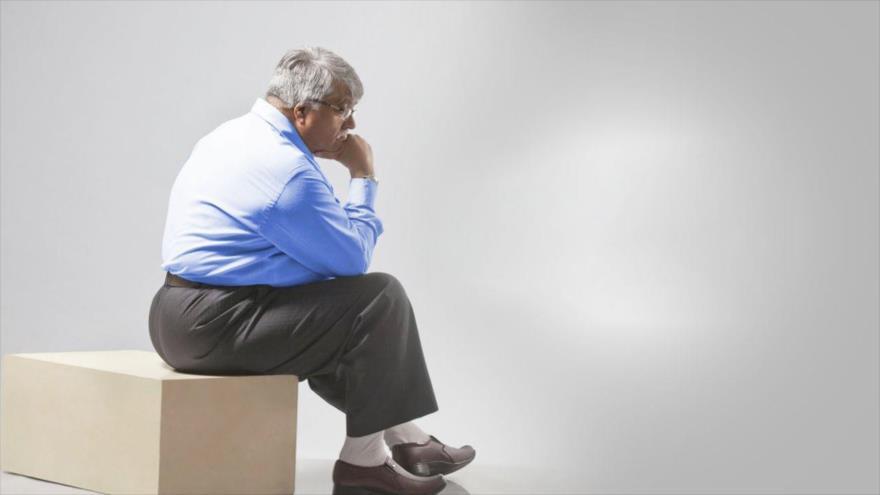 Estudio revela que el proceso de recambio de lípidos en el tejido adiposo que disminuye durante el envejecimiento, facilita el aumento de peso.