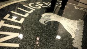Conozcan el animal espía secreto más favorito de la CIA: Do Da