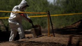 Hallan 29 cuerpos en una fosa 'clandestina' en México