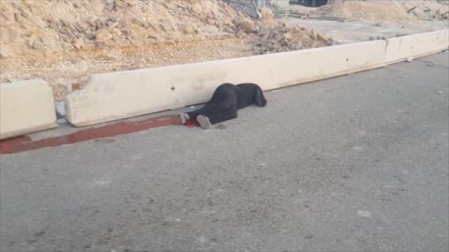 Vídeo: Fuerzas israelíes matan a tiros a una mujer palestina | HISPANTV