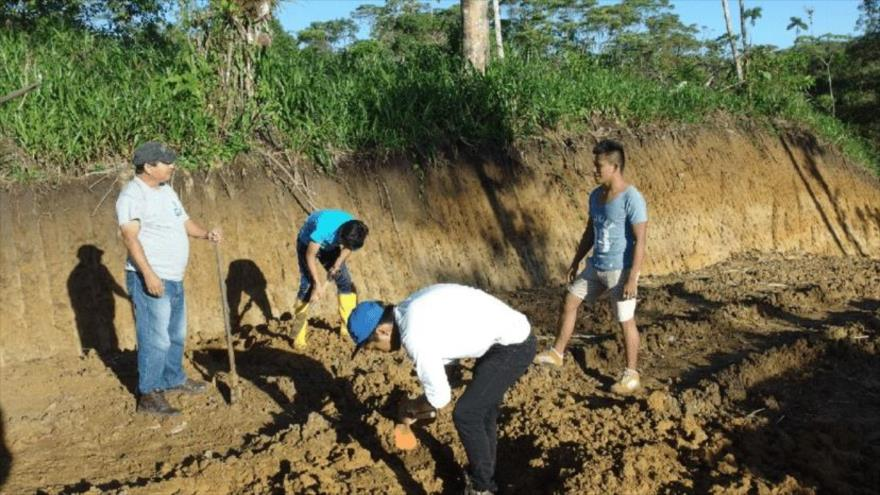 Investigadores realizan excavaciones en la Amazonía, Brasil.