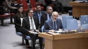 Siria acusa a algunos miembros del CSNU de apoyar al terrorismo