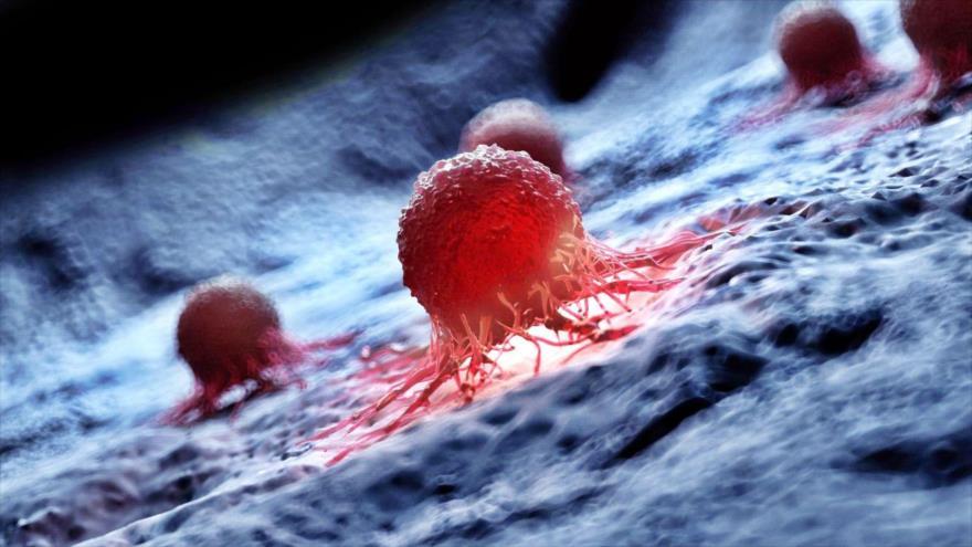 Un estudio defiende que la edad frena el desarrollo de cáncer aunque también lo promueva.