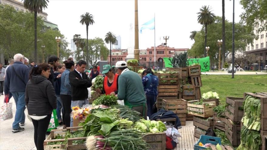 """Productores en Argentina lanzan """"alimentazo"""" a precios económicos"""