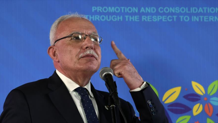 Palestina insta a relatores de la ONU a exponer crímenes de Israel | HISPANTV