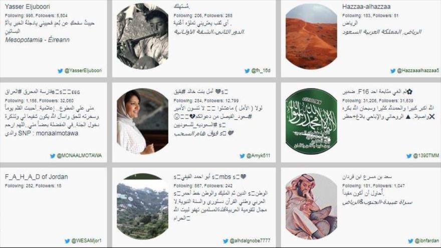 Usuarios saudíes de Twitter.