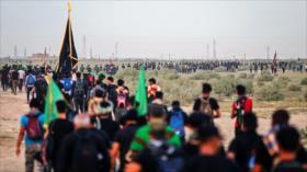 Vídeo: Peregrinos marchan hacia Karbala para conmemorar Arbaín