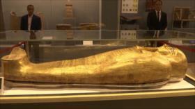 El Toque: 1- Reliquias del imperio persa 2- X-men de carne y hueso 3- Depredador más siniestro del océano 4- Peligros de dormir poco