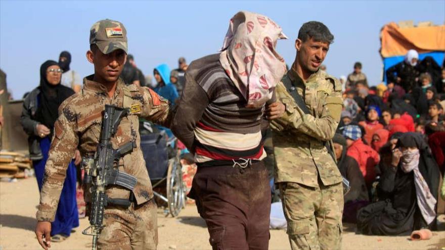 Irak neutraliza varios atentados contra peregrinos de Arbaín   HISPANTV