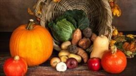 6 claves sobre alimentación en otoño ante cambio de temporada