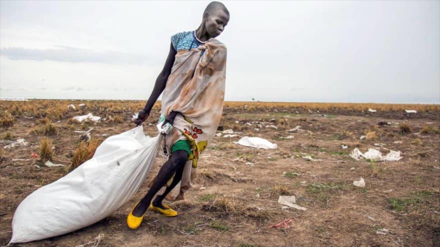 'Hay que adaptarse al cambio climático para solucionar el hambre' | HISPANTV