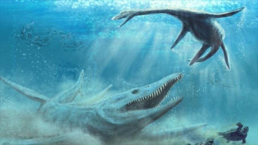 Hallan huesos de un monstruo marino de 150 millones de años en Polonia.
