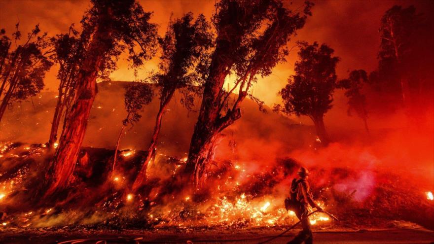 Un incendio forestal en Santa Paula, California (EE.UU.), 1 de noviembre de 2019. (Foto: AP)