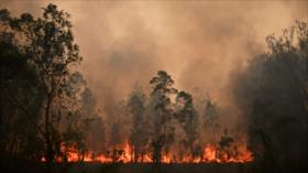 Incendios en Australia dejan al menos tres muertos