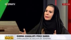 Embajadora de Bolivia en Irán aborda golpe militar contra Morales