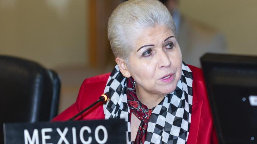 La representante de México denuncia ante la Organización de Estados Americanos (OEA), embajadora Luz Elena Baños Rivas.