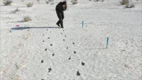 Científicos hallan huellas fantasma de hace 12 000 años en EEUU