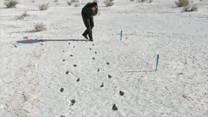 Huellas fantasma de hace 12 000 años han reaparecido en el desierto del White Sands National Monument, en el estado estadounidense de Nuevo México.