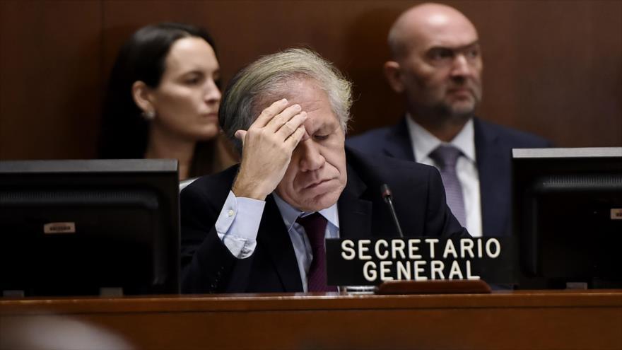 El secretario General de la Organización de Estados Americanos (OEA), Luis Almagro, en una reunión en Washington, 12 de noviembre de 2019. (Foto: AFP)