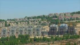 Ocupación israelí. Mundo sin armas nucleares. Golpe en Bolivia