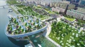 Aumentar las zonas verdes en las ciudades reduce la mortalidad