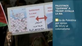 PoliMedios: Palestinos queman a Trump; estalla la ira