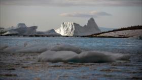 Informe: Calentamiento ha provocado pérdida de oxígeno en océanos