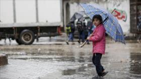 Informe: La peor pesadilla empieza en Gaza cuando…. ¡llueve!