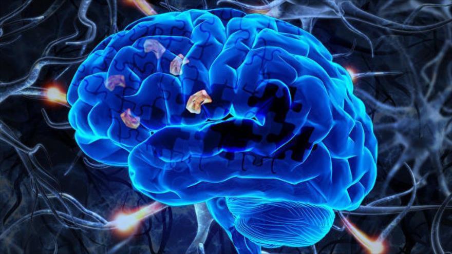Un grupo de científicos descubre el 'almacén' mental en el que guardamos las palabras.