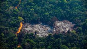 Alarmante aumento de deforestación en la Amazonía brasileña