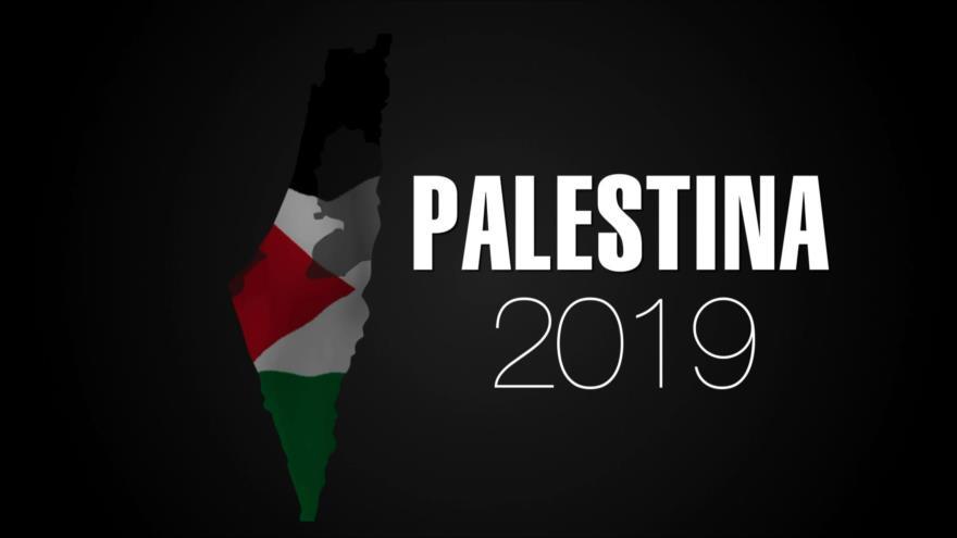 2019, un año de sufrimiento y resistencia para los palestinos
