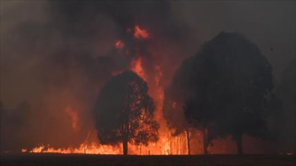 4000 personas han quedado acorraladas por incendios en Australia
